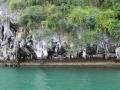 Экскурсия на Острова Джеймса Бонда