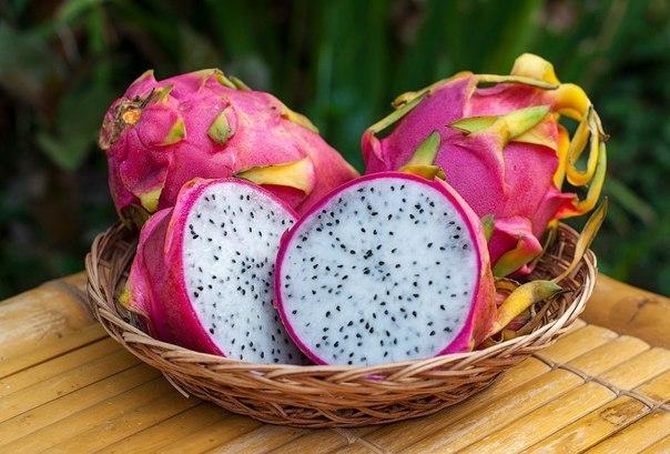 плоды 3
