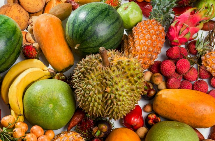 плоды 5