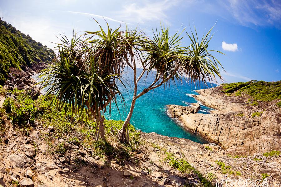 природа остров тачай1
