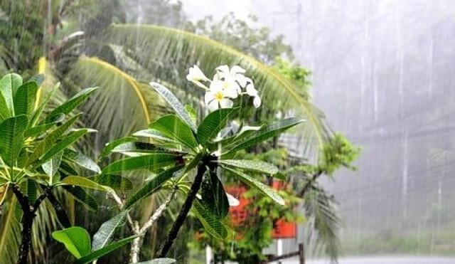 сезон дождей тайланд