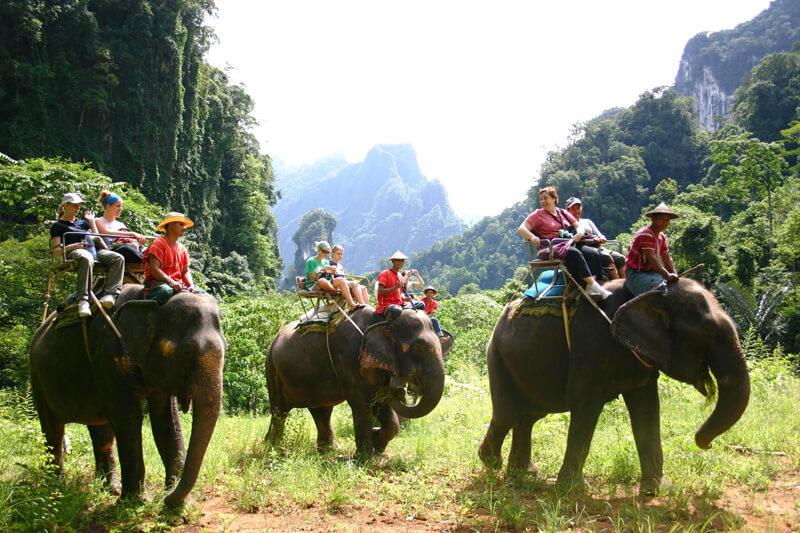 рафтинг на слонах